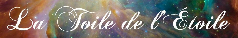 etoile_filante_toile