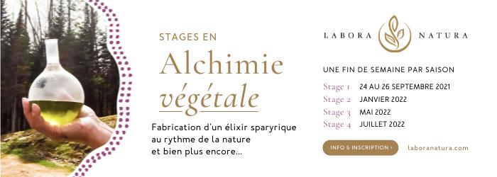 Banniere_Stage-Alchimie-Vegetale